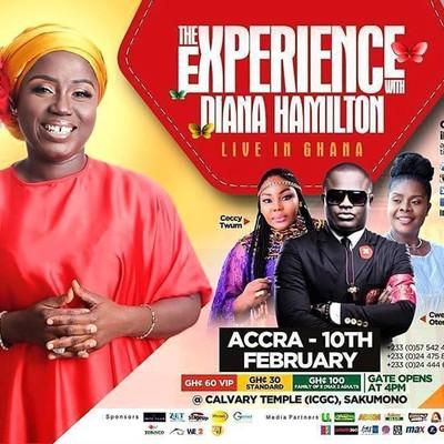 Experience With Diana Hamilton