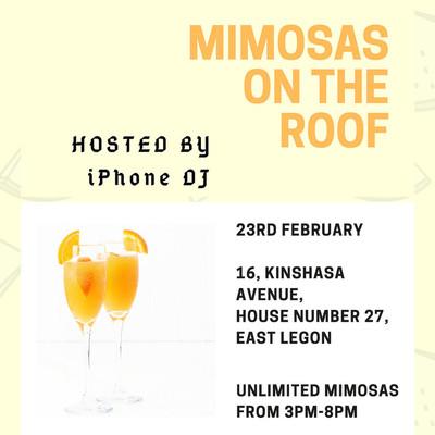 MimosasOnTheRoof