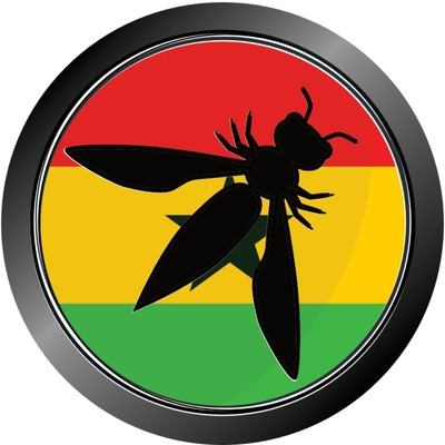 Application/Software Security June Meetup by OWASP GHANA