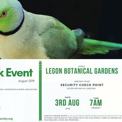 August Bird Walk 2019