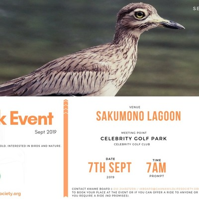 September Bird Walk 2019