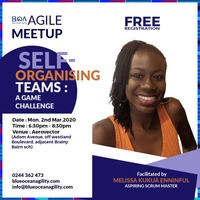 Blue Ocean Agility Meetup Accra 2nd March – Self Organising Teams
