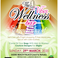 The Vibes Wellness Bar Event