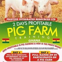 2 Days Profitable Pig Farm Training