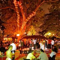 Salsa Night at Afrikiko