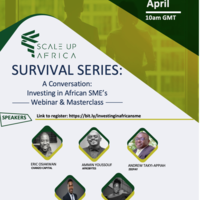 Africa SME Survival Series - Episode 3: Investing in African SMEs