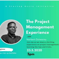 The Project Management Experience