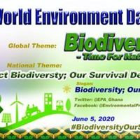 2020 World Environment Day