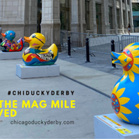 15th Annual Chicago Ducky Derby Goes Virtual