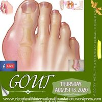 "DISCUSSION ON THE TOPIC: ""GOUT"""
