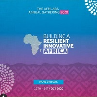Building A Resilient Innovative Africa