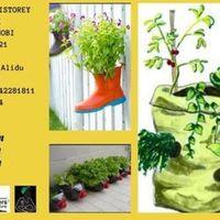 Ghanas 1st Multistorey Garden Walk