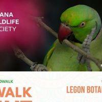 February Bird Walk 2021