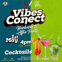 Vibes Conect - Barbecue & After Party