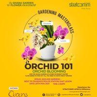 Gardening Masterclass: ORCHID 101