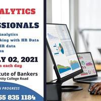 Data Analytics for HR Professionals