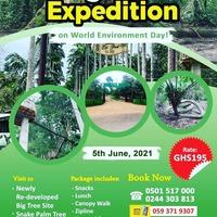 Big Tree Expedition