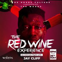 The RED WINE Experience