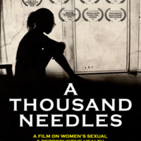 A Thousand Needles Film Screening at WomanFest Ghana