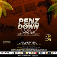 Penz Down Redefined